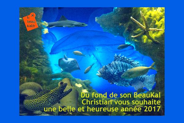 Vœux 2017 du BeauKal